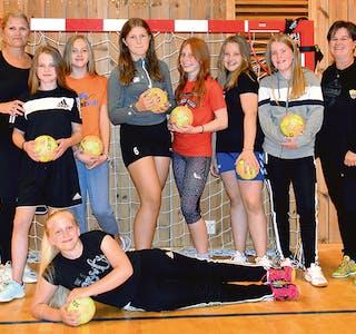 til nett, handballjentene 12 år RGB